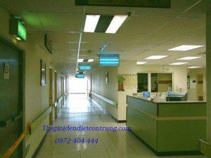 Mua ngay đèn diệt côn trùng hiệu quả tại thegioidendietcontrung.com