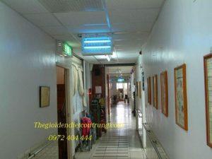 Tính năng của đèn diệt côn trùng QE 3L – 2