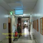 Diệt côn trùng an toàn cho bệnh viện