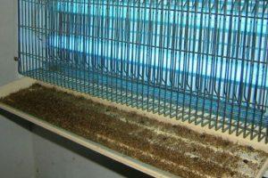 Máy diệt côn trùng hiệu quả