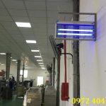 Địa chỉ bán đèn diệt muỗi hiệu quả tại Việt Nam